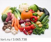 Купить «Натюрморт из свежих овощей», фото № 3065738, снято 11 октября 2007 г. (c) Monkey Business Images / Фотобанк Лори