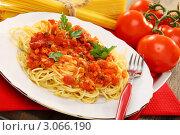 Купить «Спагетти с томатным соусом», фото № 3066190, снято 18 декабря 2011 г. (c) Марина Сапрунова / Фотобанк Лори