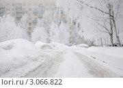 Санкт-Петербург. Двор в снегу. (2010 год). Стоковое фото, фотограф Александронец Олеся / Фотобанк Лори