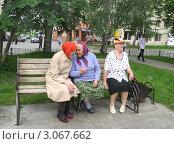 Купить «Разговор на лавочке. Пенсионерки», фото № 3067662, снято 29 октября 2006 г. (c) Татьяна Матвейчук / Фотобанк Лори