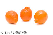 Купить «Три мандарина на белом фоне», фото № 3068706, снято 15 марта 2011 г. (c) Ласточкин Евгений / Фотобанк Лори