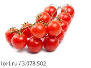 Большая гроздь помидоров черри в каплях воды. Стоковое фото, фотограф Константин Сидоров / Фотобанк Лори