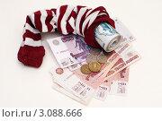 Купить «Сбережения в чулке», эксклюзивное фото № 3088666, снято 19 декабря 2011 г. (c) Сайганов Александр / Фотобанк Лори