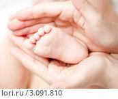 Купить «Детская голая пятка в руках взрослого», фото № 3091810, снято 29 марта 2009 г. (c) Дмитрий Наумов / Фотобанк Лори
