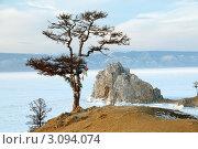 Дерево желаний на мысе Бурхан острова Ольхон на Байкале. Стоковое фото, фотограф Некрасов Андрей / Фотобанк Лори