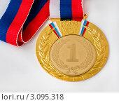 Купить «Золотая медаль», эксклюзивное фото № 3095318, снято 27 декабря 2011 г. (c) Игорь Низов / Фотобанк Лори