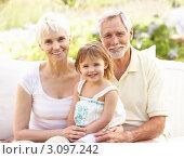 Купить «Улыбающиеся бабушка и дедушка с внучкой в саду», фото № 3097242, снято 27 февраля 2010 г. (c) Monkey Business Images / Фотобанк Лори