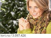 Купить «Красивая молодая блондинка в зимнем свитере на фоне ели», фото № 3097426, снято 2 февраля 2010 г. (c) Monkey Business Images / Фотобанк Лори