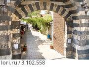 Купить «Дамаск, Сирия», фото № 3102558, снято 6 сентября 2009 г. (c) Анна Мегеря / Фотобанк Лори