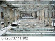 """""""Скелет"""" недостроенного разрушающегося здания. Стоковое фото, фотограф Трошина Елена / Фотобанк Лори"""