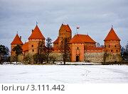 Купить «Тракайский замок зимой. Литва», фото № 3111442, снято 11 марта 2011 г. (c) Наталья Белотелова / Фотобанк Лори