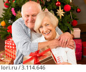 Купить «Счастливая пожилая пара у новогодней елки с подарками», фото № 3114646, снято 5 февраля 2011 г. (c) Monkey Business Images / Фотобанк Лори
