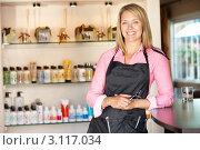 Купить «Блондинка-парикмахер на фоне витрины со средствами по уходу за волосами в парикмахерской», фото № 3117034, снято 11 мая 2011 г. (c) Monkey Business Images / Фотобанк Лори