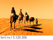 Купить «Караван из верблюдов в пустыне Сахара», фото № 3120306, снято 11 декабря 2017 г. (c) Олег Селезнев / Фотобанк Лори