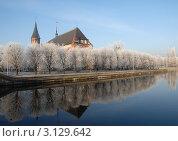 Калининград. Зимний пейзаж (2011 год). Редакционное фото, фотограф Svet / Фотобанк Лори