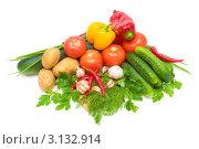 Купить «Свежие овощи на белом фоне», фото № 3132914, снято 1 октября 2011 г. (c) Ласточкин Евгений / Фотобанк Лори