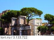 Руины Римского Форума, Рим, Италия (2008 год). Редакционное фото, фотограф ElenArt / Фотобанк Лори