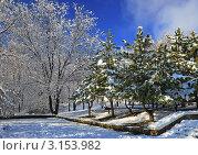 Зимний пейзаж. Стоковое фото, фотограф Станислав Сменов / Фотобанк Лори