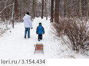 Купить «Бабушка с внуком на прогулке в зимнем парке», эксклюзивное фото № 3154434, снято 15 января 2012 г. (c) Родион Власов / Фотобанк Лори