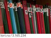 Купить «Корешки подшивок документов советского периода», эксклюзивное фото № 3165234, снято 20 января 2012 г. (c) Родион Власов / Фотобанк Лори