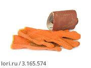 Купить «Наждачная бумага и рабочие перчатки», фото № 3165574, снято 3 апреля 2020 г. (c) Lora Liu / Фотобанк Лори