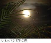 Луна. Стоковое фото, фотограф Дмитрий Романенко / Фотобанк Лори