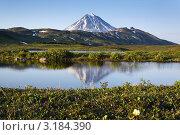 Купить «Вилючинский вулкан и отражение вулкана в горном озере. Полуостров Камчатка», фото № 3184390, снято 3 июля 2019 г. (c) А. А. Пирагис / Фотобанк Лори