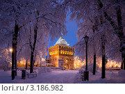 Купить «Дмитриевская  башня Нижегородского кремля», фото № 3186982, снято 10 февраля 2020 г. (c) Igor Lijashkov / Фотобанк Лори