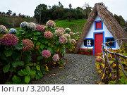 Купить «Мадейра. Треугольные домики, типичные для городка Сантана (Santana)», фото № 3200454, снято 24 декабря 2011 г. (c) Виктория Катьянова / Фотобанк Лори