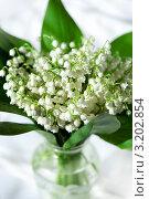 Купить «Лесной ландыш в прозрачной вазе», фото № 3202854, снято 28 мая 2011 г. (c) ElenArt / Фотобанк Лори