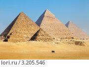 Купить «Вид на три великие пирамиды Гизы около города Каира, Египет», фото № 3205546, снято 20 января 2012 г. (c) Николай Винокуров / Фотобанк Лори