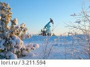 Купить «Зимний пейзаж с нефтяным станком-качалкой», фото № 3211594, снято 31 января 2012 г. (c) Икан Леонид / Фотобанк Лори