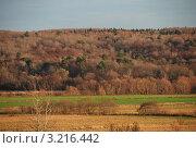 Купить «Калужская область. Осенний пейзаж», эксклюзивное фото № 3216442, снято 5 ноября 2011 г. (c) lana1501 / Фотобанк Лори