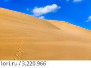 Вид на дюны из песка в жаркой пустыне (2012 год). Стоковое фото, фотограф Николай Винокуров / Фотобанк Лори