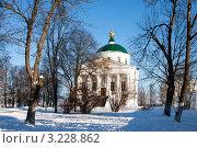 Купить «Ярославль. Церковь Похвалы Богоматери», фото № 3228862, снято 28 января 2012 г. (c) ElenArt / Фотобанк Лори