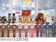 Купить «Призы», фото № 3229542, снято 29 января 2012 г. (c) Кирова Наталья / Фотобанк Лори