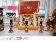 Купить «Награды», фото № 3229546, снято 29 января 2012 г. (c) Кирова Наталья / Фотобанк Лори