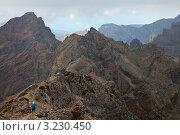 Купить «Остров Мадейра. Туристы уходят в горы по тропе между перевалами на высоте 1810 м», фото № 3230450, снято 26 декабря 2011 г. (c) Виктория Катьянова / Фотобанк Лори