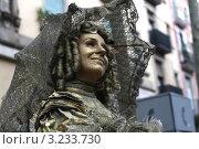 Мим (2008 год). Редакционное фото, фотограф Перевалова Ольга Геннадьевна / Фотобанк Лори