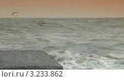 Сильный шторм на Черном море (2012 год). Стоковое видео, видеограф Владимир Никулин / Фотобанк Лори