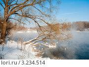 Зимний пейзаж с деревом нависшим над водой пруда. Стоковое фото, фотограф Игорь Низов / Фотобанк Лори