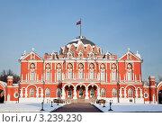 Купить «Петровский путевой дворец. Москва», фото № 3239230, снято 7 февраля 2012 г. (c) Наталья Волкова / Фотобанк Лори