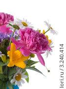 Букет пионов и полевых цветов. Стоковое фото, фотограф Елена Блохина / Фотобанк Лори