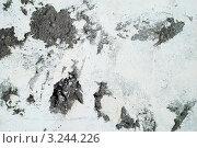 Фактура грубой бетонной стены. Стоковое фото, фотограф Александр Фемяк / Фотобанк Лори