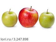 Купить «Яблоки», фото № 3247898, снято 2 мая 2011 г. (c) Glen_Cook / Фотобанк Лори