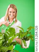 Купить «Улыбающаяся молодая блондинка опрыскивает растения в офисе с зелеными стенами», фото № 3264326, снято 24 ноября 2011 г. (c) CandyBox Images / Фотобанк Лори