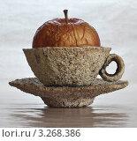 Яблоко в чашке. Стоковое фото, фотограф Владимир Аксёнов / Фотобанк Лори