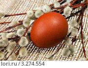 Купить «Пасхальное яйцо и веточки вербы», фото № 3274554, снято 12 июня 2011 г. (c) ElenArt / Фотобанк Лори