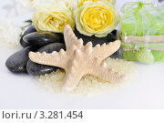 Купить «Набор для душа», фото № 3281454, снято 12 февраля 2012 г. (c) Липатова Ольга / Фотобанк Лори
