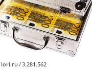 Купить «Полный чемодан денег», фото № 3281562, снято 13 апреля 2009 г. (c) Игорь Соколов / Фотобанк Лори